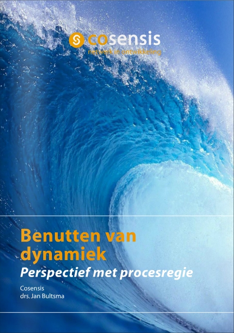 publicatie_BenuttenVanDynamiek